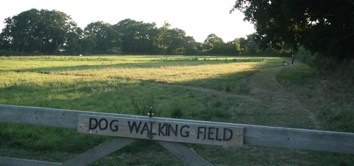 WTS - Haw Wood Farm - Dog Walking Meadow