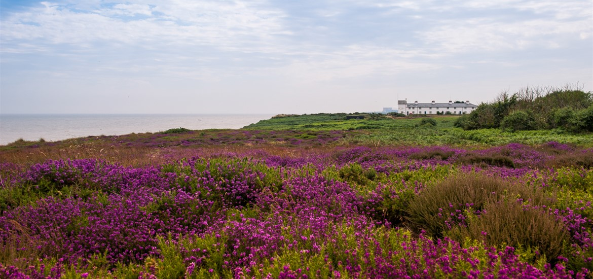 Dunwich Heath and Coastguard Cottages - credit Gill Moon