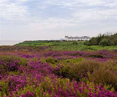 National Trust Dunwich Heath - (c) Gill Moon Photography