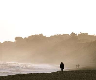Dunwich Beach - (c) Habie Schwartz