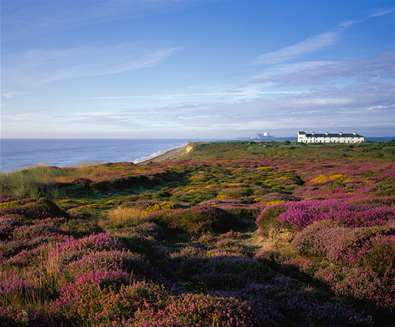 TTDA - Dunwich Heath - (c) Malcolm Farrow