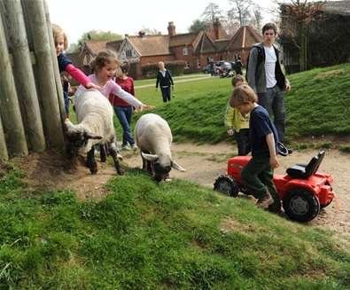 TTDA - Easton Farm Park - Children playing