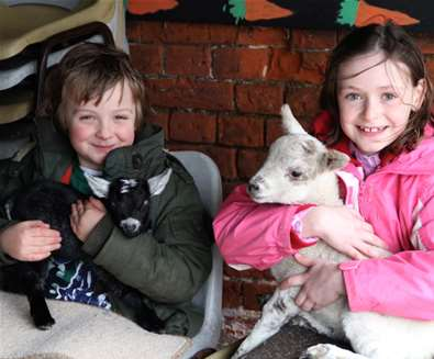 Easton Farm Park Kids with Lambs