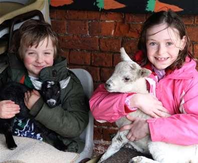 TTDA - Easton Farm Park - children holding goats