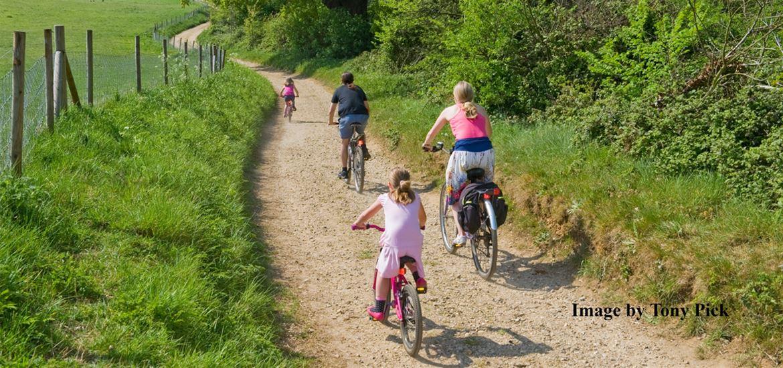 Family cycling - Tony Pick