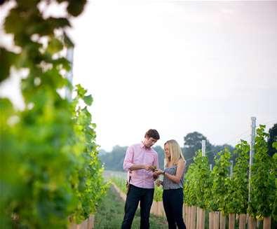 TTDA - Flint Vineyard - Hannah & Ben in Vineyard