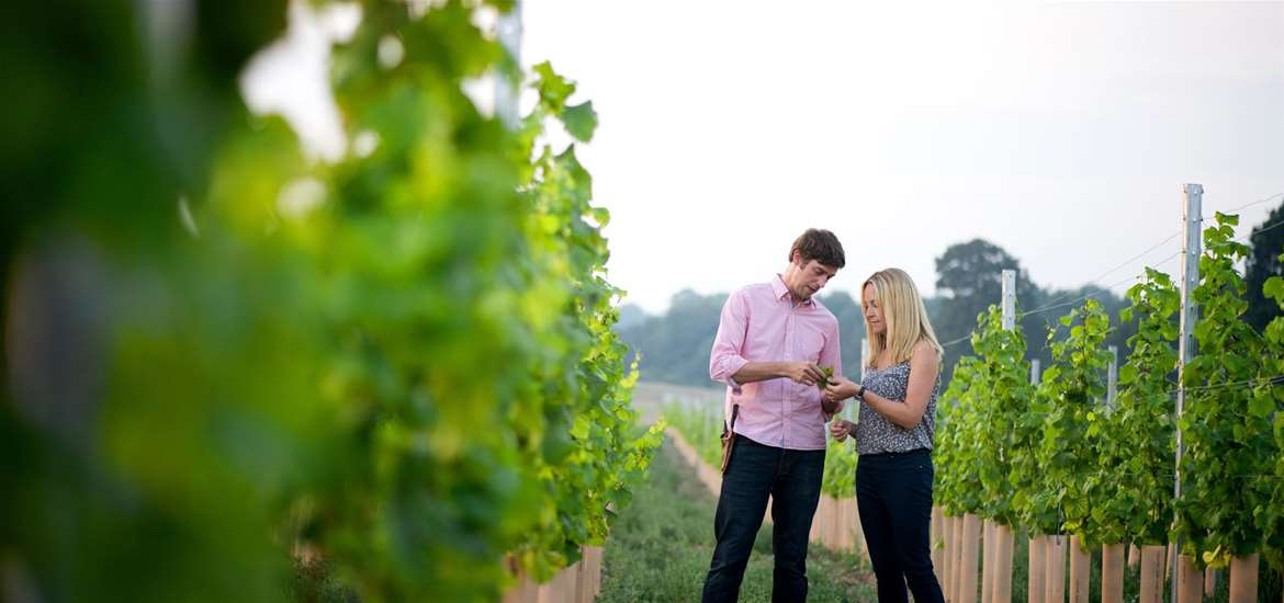 TTDA - Flint Vineyard - Hannah & Ben
