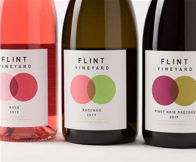 Vineyard & winery tours..