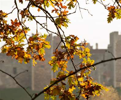 Unexplored England - Top places to see the autumn leaves