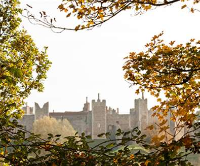 Framlingham Castle through the Trees - (c) Emily Fae Photography