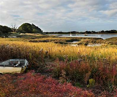 Blogs - The Dig - Deben Peninsula (c) Gill Moon Photography