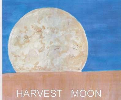 Beccles Harvest Moon Music Festival