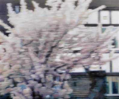 Kate Sherman - Blossom..