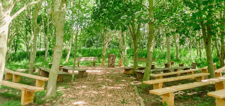 Weddings - Kenton Hall Estate - Woods