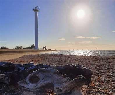Landguard Point Felixstowe - Suffolk coast