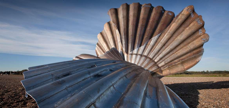 TTDA - Aldeburgh - Scallop