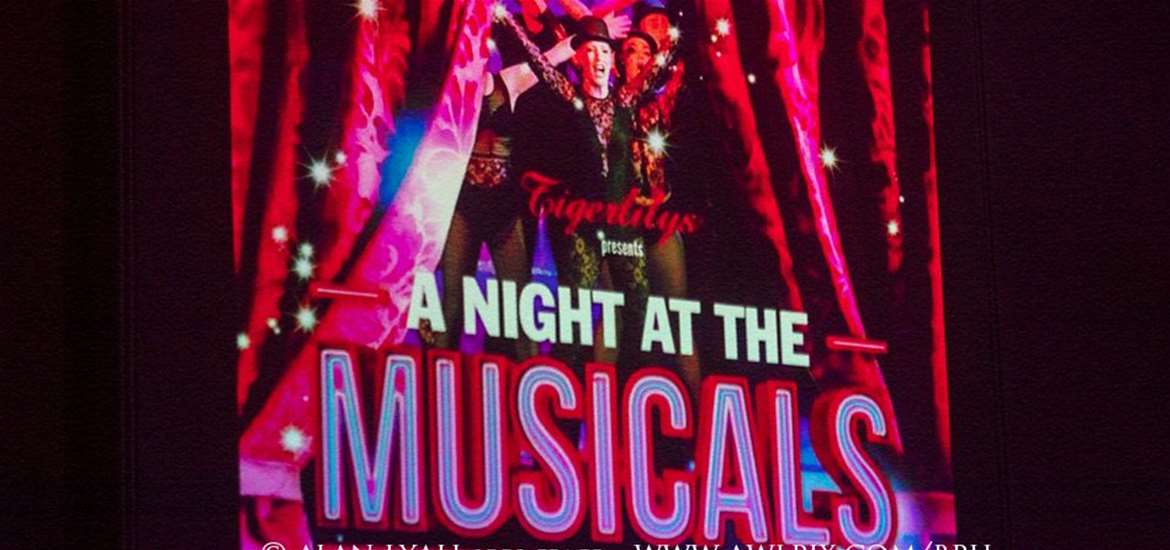 TTDA - Beccles Public Hall - Night at the Musicals