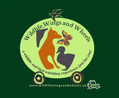Wildlife, Wings and Wheels