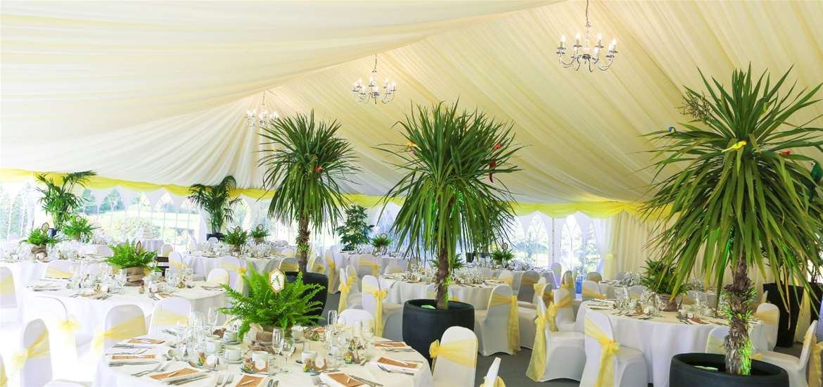 Weddings - Hungarian Hall - Marquee with trees