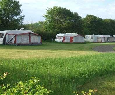 WTS - Mill Hill Farm Camping - Campsite