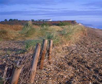 TTDA - Suffolk Coast & Heaths AONB - Minsmere