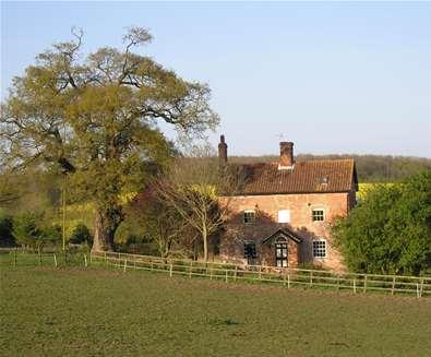 WTS - Oak Tree Farm - View from fields