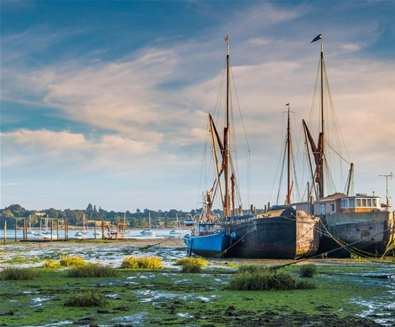 Experience the Power of Nature on the Shotley Peninsula