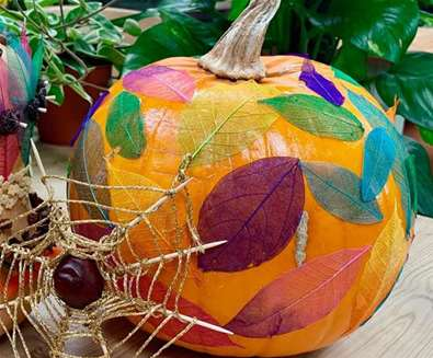 TTDE - Urban Jungle - Jazz up your jungle pumpkin