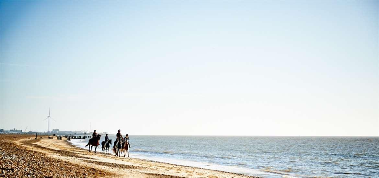 TTDA - Pakefield Riding School - horses on beach