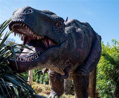 TTDA - Roarr Dinosaur Adventure - T Rex