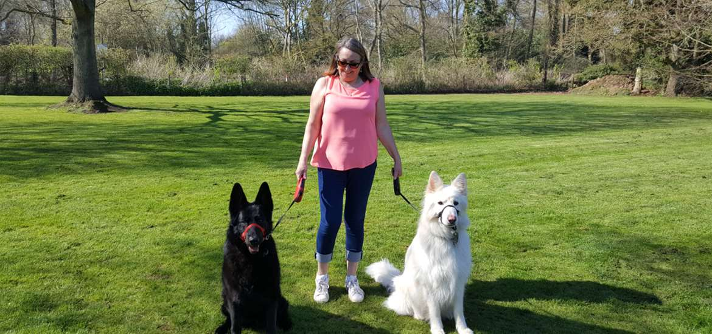 Run Cottage Dog Friendly