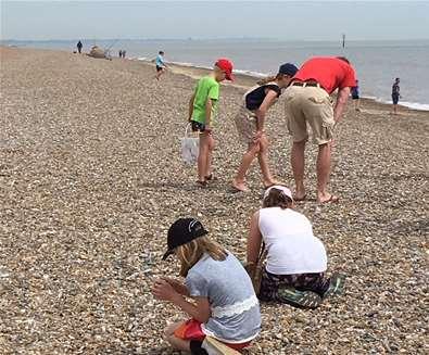Beachcombing on Sizewell Beach