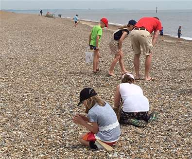 Beachcombing on Sizewell Beach