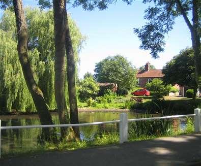 Towns & villages - Somerleyton - pond