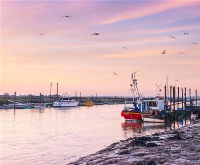 Rivers and Waterways - River Blyth - (c) Gill Moon Photography