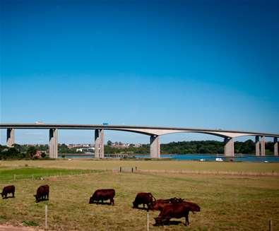 TTDA - Suffolk Food Hall - View of Orwell Bridge