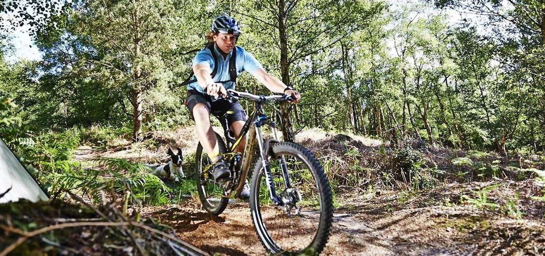 Cycling Suffolk Coast Style