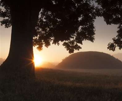 Summer Solstice Talk and Walk National Trust - Sutton Hoo