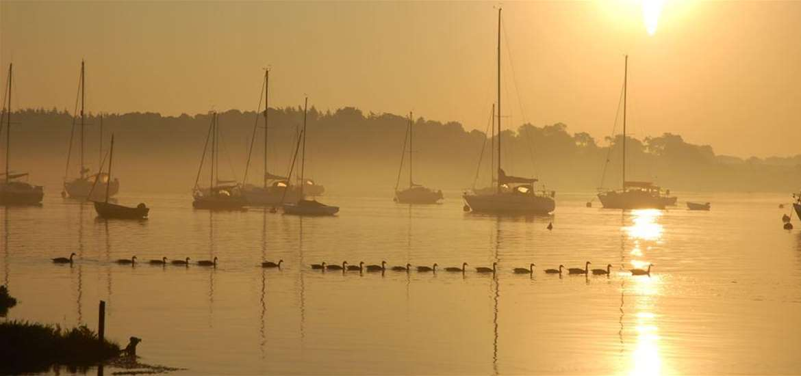 Deben Boat Trip - Deben Sunset - Attractions