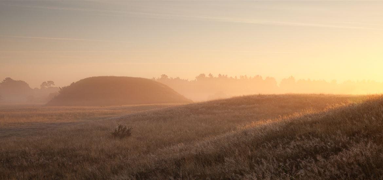 Sutton Hoo - Landscape
