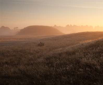 Gruesome Graves Tours at Sutton Hoo