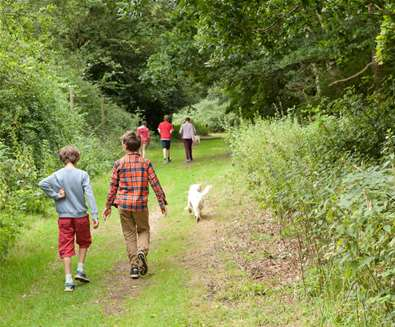 Children walking at Rendlesham - Emily Fae Photography