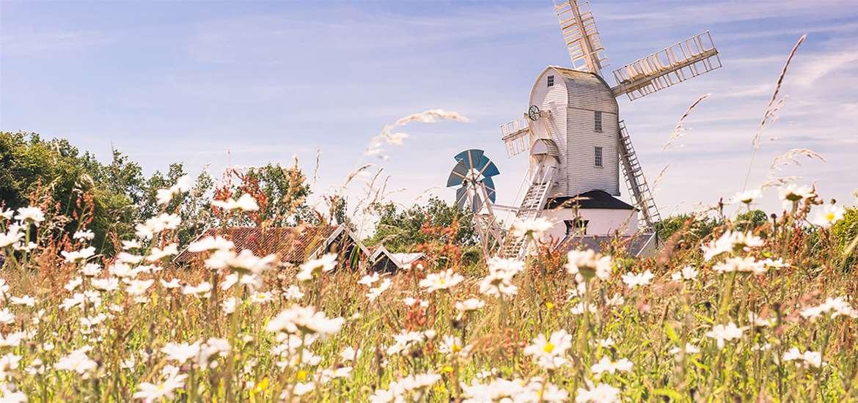 TTDA - Gill Moon Photography - Saxstead Mill