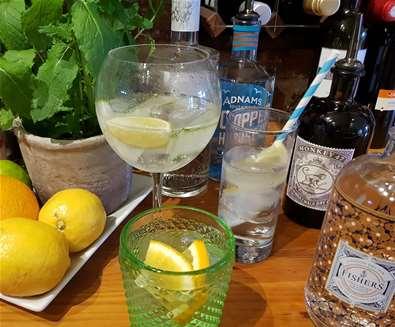 The Parrot Gin Menu