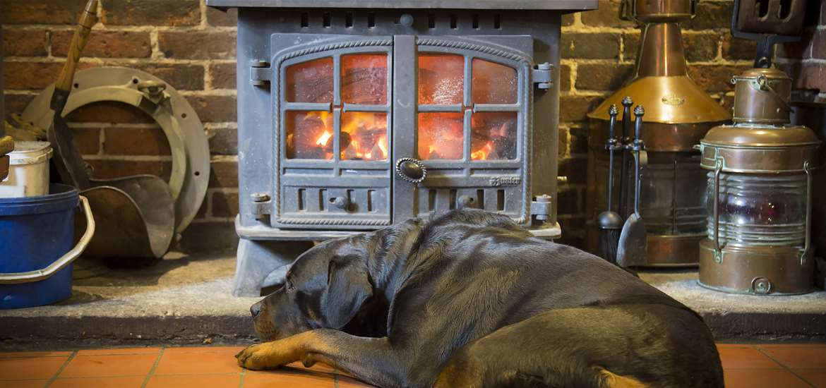 The Ship Inn Levington - dog friendly