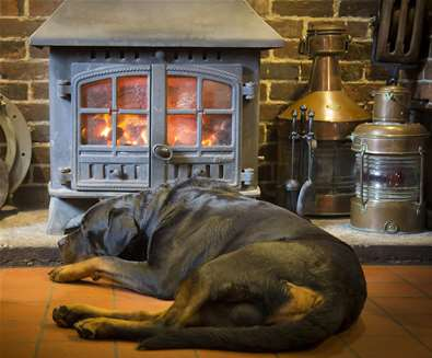 FD  - The Ship Inn Levington - Dog in front of fire