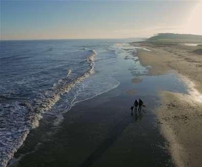 Beaches - Covehithe - drone