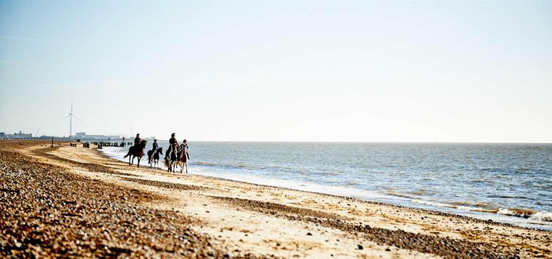 TTDA - Horse Riding on TSC - Emily Fae Photography