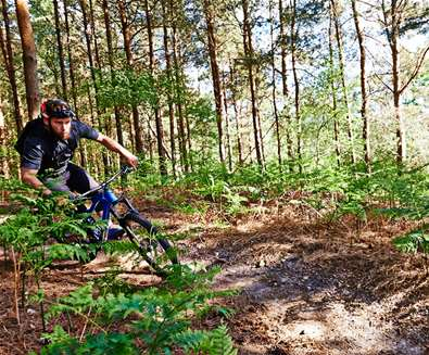 TTD - Cycling - Tunstall Forest (c) Ade Gormley