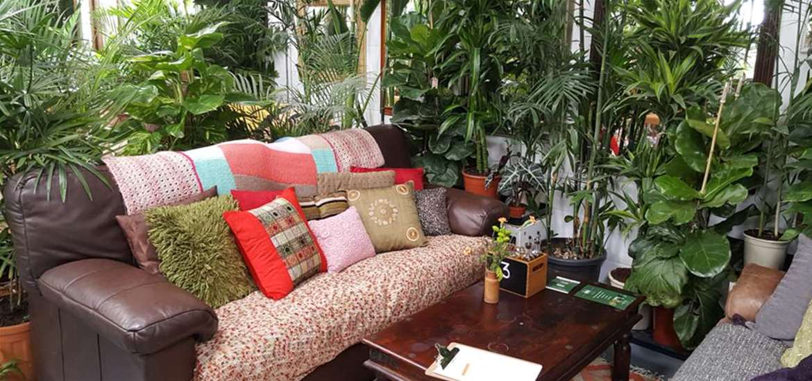 TTDA - Urban Jungle Suffolk - sofas